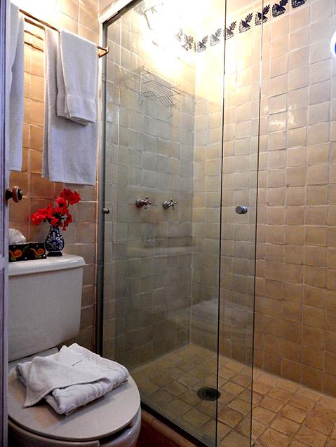 Vincent van Gogh bathroom
